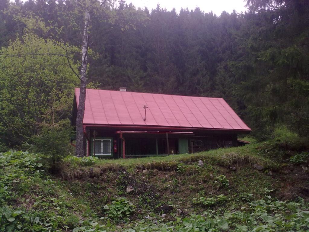 malovanie,strecha